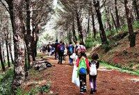 escursione-boschi
